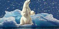 Kreuzfahrt Arktis